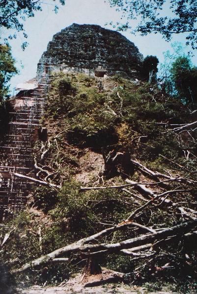 Chrám V (pět) v Tikalu před rokem 2003